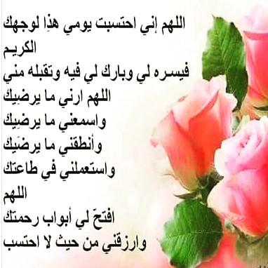12383091_1038975909473695_713077380_n.jpg